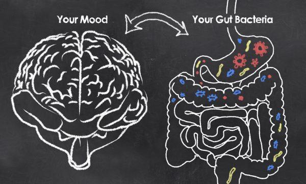 Gut Health, Healthy Gut Microbiome