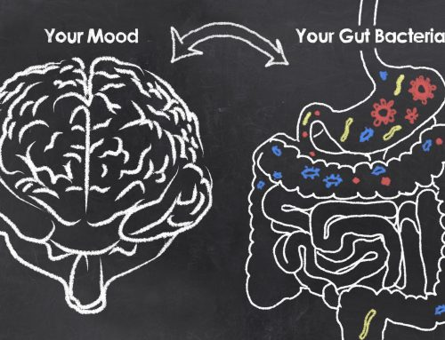 Healthy Gut Microbiome and You